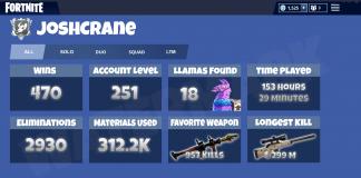 Fortnite Battle Royale Statistics Concept