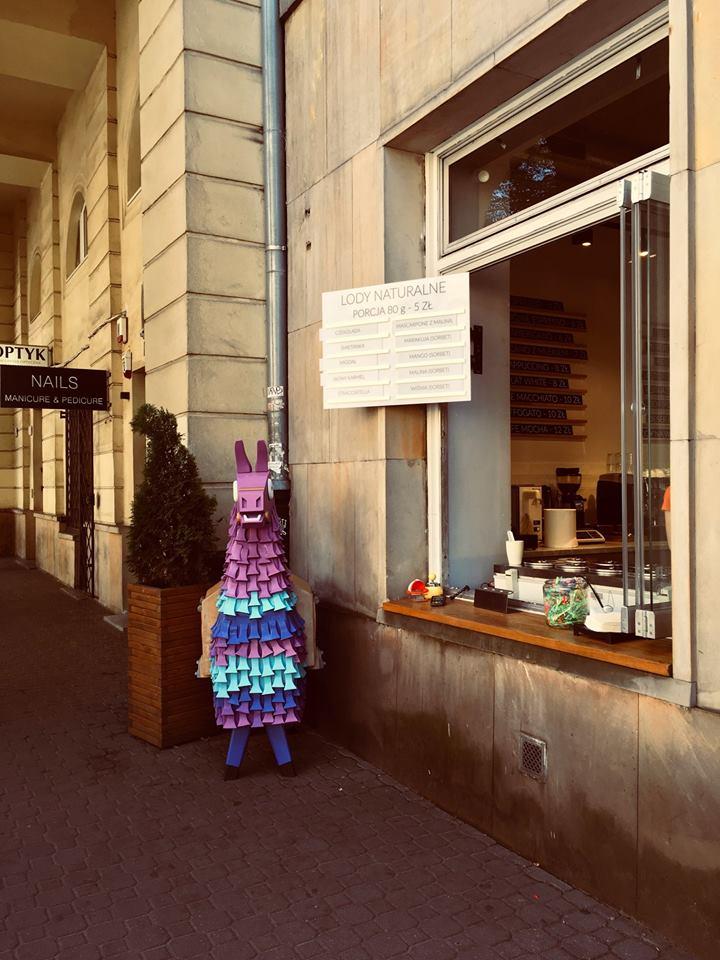Poland Llama