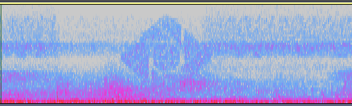 Spectrograph of the snowstorm sound files