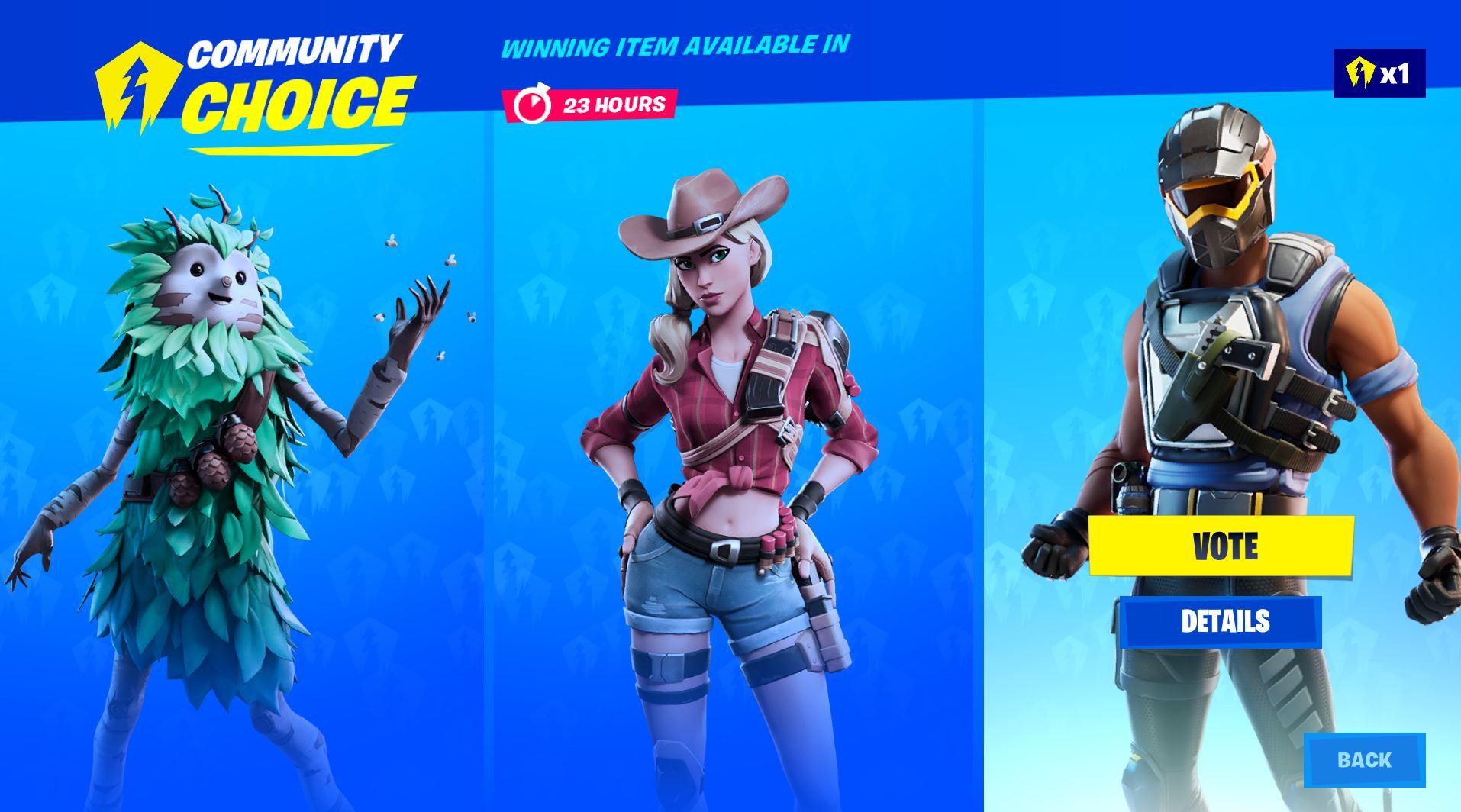 Fortnite Item Shop community vote skins