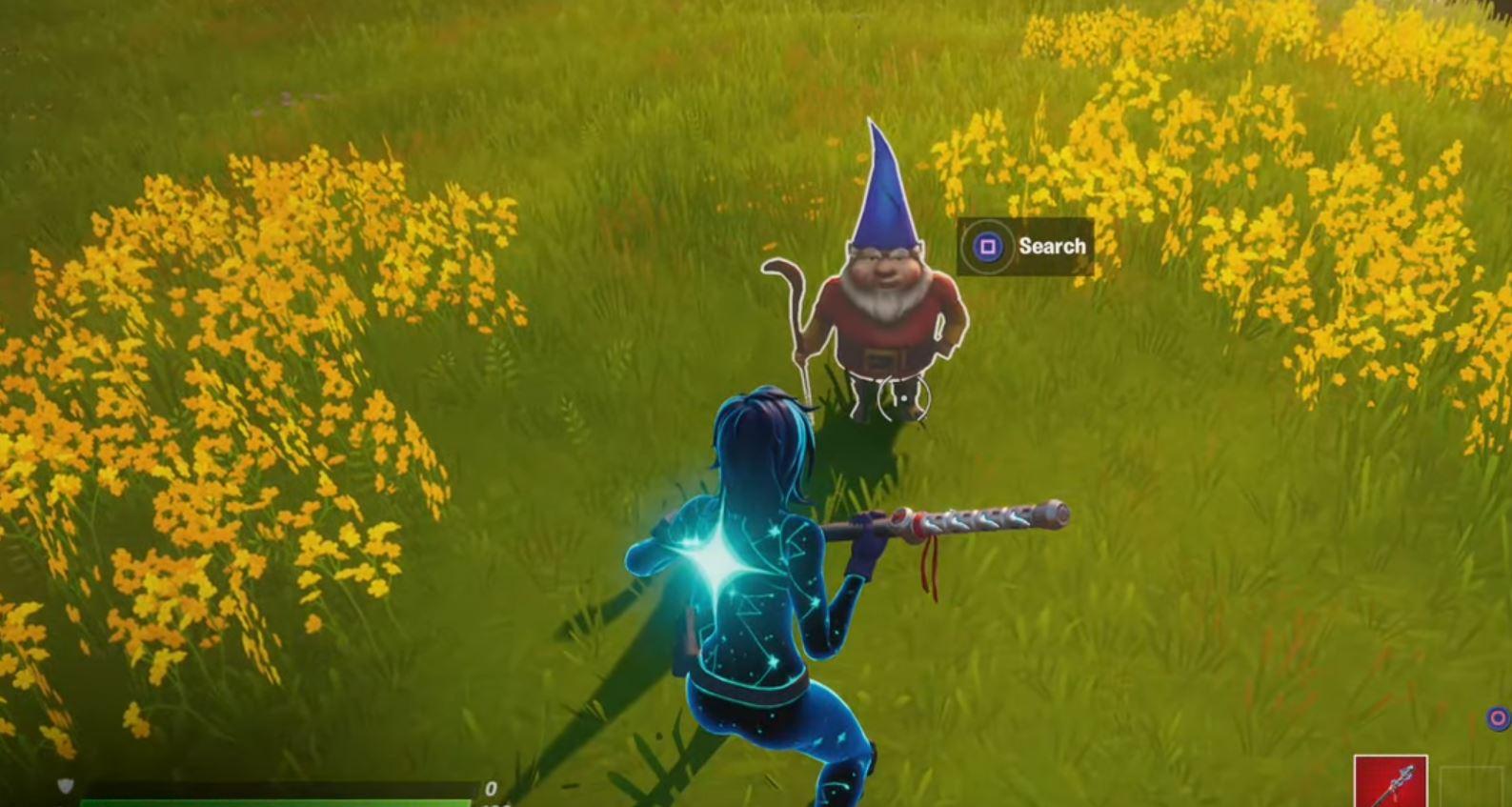 Fortnite Hidden Gnome Fancy View
